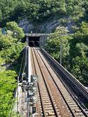 Railroad bridge and tunel — Stock Photo