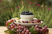 Fruit Tray Outdoors — Stock Photo