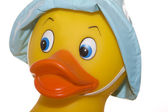 Toy Duck Portrait — Stock Photo