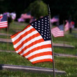 Stock Photo: Flag Standing in Memorial Park