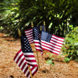 Flags in Garden — Stock Photo