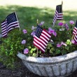 Planter American Flags — Stock Photo