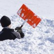 Stock Photo: Boy Playing in snow