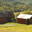 Stock Photo: Farm in Country