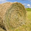 Huge Roll of Hay/Wheat in Country — Stock Photo
