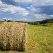 Stock Photo: Scenic Harvesting of Hay