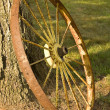Rustic Wagon Wheel — Stock Photo #11488671