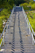 Long Cement Steps — Stock Photo