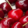 Group of Cherries Closeup — Stock Photo