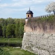 Stock Photo: Dubno Castle