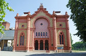 Uzhhorod synagogue — 图库照片