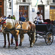 Horse drawn carriage - Lizenzfreies Foto