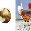 Postcard - cock and gold egg — Stock Photo