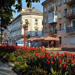 Stock Photo: Flowerbeds on Sagaidachnyi str in center of Ternopil