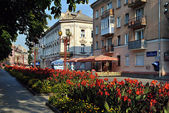 Flowerbeds on Sagaidachnyi str in the center of Ternopil — Stock Photo