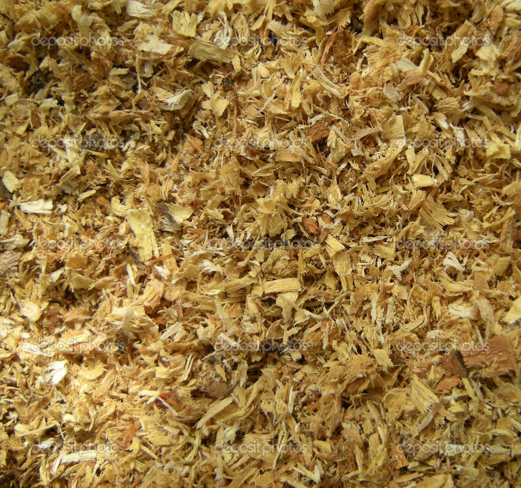 Close up on wood chips and sawdust texture — Stock Photo #11681421