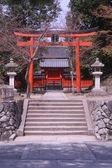 Torii Gate and sakura — Stock Photo