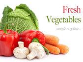 Resh vegetables — Stock Photo