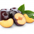 Plums isolated - Stock Photo