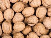 Walnut background — Stock Photo