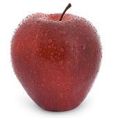 Mokrá červená jablka — Stock fotografie