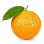 Apelsiner frukt — Stockfoto