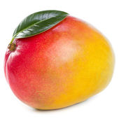 Mango fruit — Stock Photo