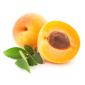 Apricot fruits — Stock Photo