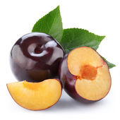 Plums isolated — Stock Photo