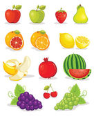 Fruits vector illustration — Stock Vector