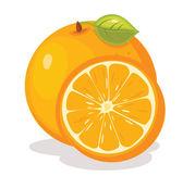 Orange vector illustration — Stock Vector