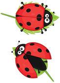Isolated ladybug vector illustratiion — Stock Vector