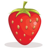 Strawberry fruit vector illustration — Stock Vector