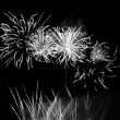 Brightly colorful fireworks — Stock Photo #11897371