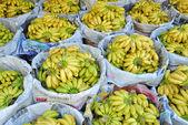 Small yellow bananas at Thai market — Stock Photo