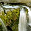 Little cascade — Stock Photo #11638309