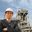 Engineer of oil refinery — Stock Photo #11219895