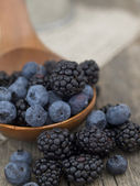 Blueberries and blackberries — Stock Photo