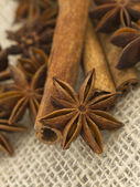 Anice with cinnamon — Stock Photo