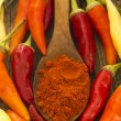 Hot chilli peppers with spice in the spoon on the wooden background — 图库照片