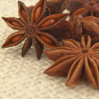 Anise on the textile background - Stock Photo