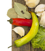 Hot chili peppers and spices on the wooden table — Stock Photo