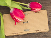 Vintage notebook with tulips — Stock Photo