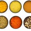 Various spices in the circle dishes - Stock Photo