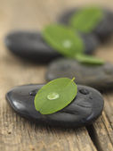 Zen like stones with leaves — Stock Photo