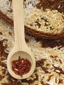 Mixture of rice — Stock Photo