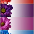 Floral banners — Stock Photo #11306712