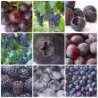 Collage of blue fruit - Stock Photo