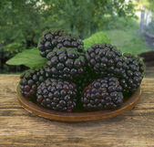 Blackberries on the table with green landscape as background — Stock Photo