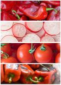 сбор овощей — Стоковое фото
